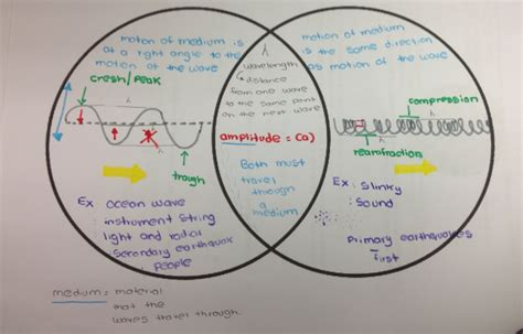 venn diagram of transverse and longitudinal waves tenth grade lesson periodic motion and waves betterlesson