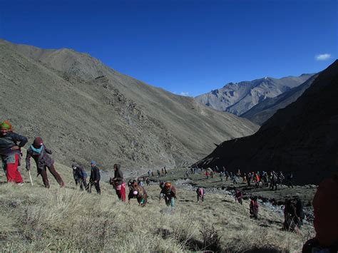 yak growing up in the remote dolpo region of nepal books dolpo