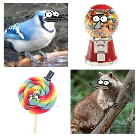 regularshow blue jay and rigby is the raccoon printable if the regular show characters became real i loooove