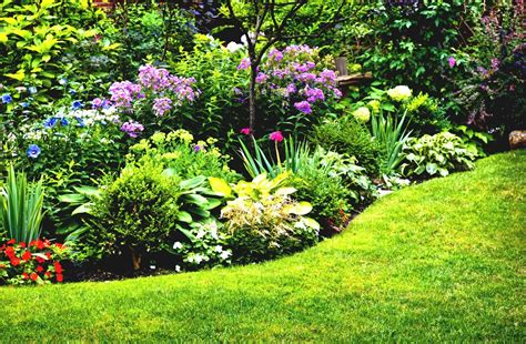 Small Garden Bed Ideas Perennial Garden Ideas For Sun Gardening Plans Landing Flower Small Bperennial Gardenb