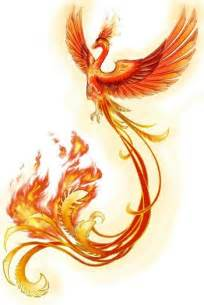 17 best images about phoenix rising on pinterest phoenix