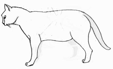 Outline Drawing Cat Laying Vitruvian Outline by Jaguar Cat S Jaguar Free Engine Image For User Manual