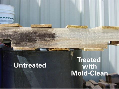 mold clean  gallon fix flood
