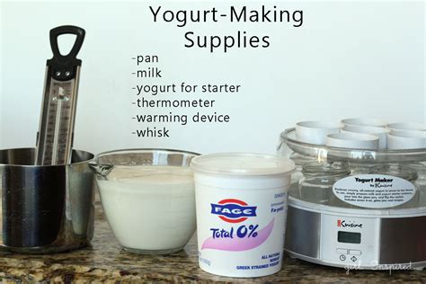 how to make yogurt at home inspired