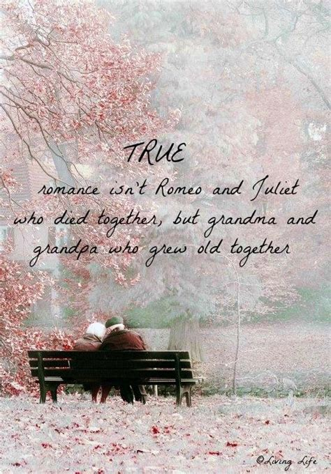 romantic quotes grow old together love quotes quotesgram