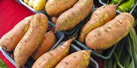 Oven Untuk Ubi Cilembu 5 manfaat ubi cilembu untuk kesehatan jendela dunia