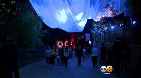 griffith park sees new twist on holiday light show 171 cbs