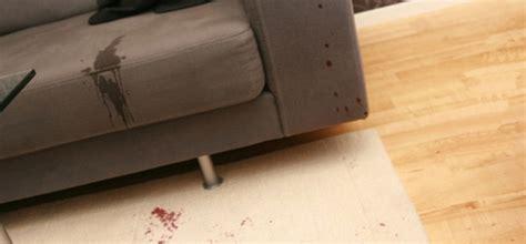 vomit on couch como tirar manchas do sof 225 lavanderia wash service