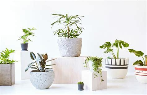 vasi per esterno prezzi vasi esterno design vasi da giardino scegliere tra i