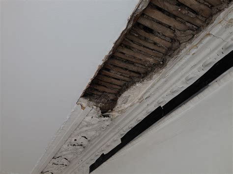 Cornice Restoration Cornice Restoration Restore Your Coving Design
