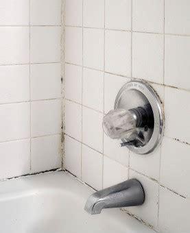 lead in porcelain bathtubs tub tile counter refinishing ceramic tile refinishing refinish tile miracle method