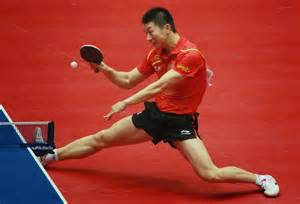sport is 13 lines indian table tennis players are
