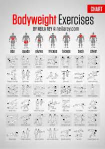 Crossfit workouts for beginners pdf bing