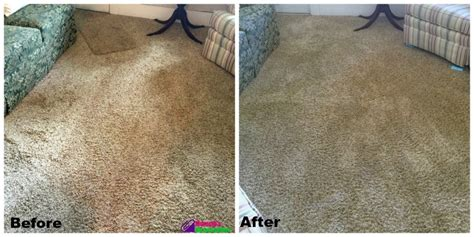 sears carpet upholstery cleaning starting summer with a deep clean sears carpet cleaning
