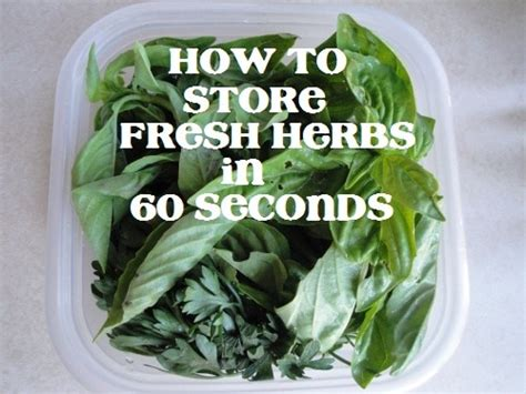 how to store fresh herbs the lazy way