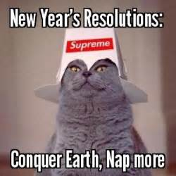 Funny New Year Meme - if your new year s resolution is to look at more lolcats