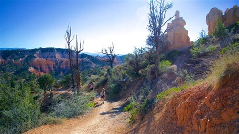 United Airlines Booking bryce canyon national park vacations 2017 package amp save