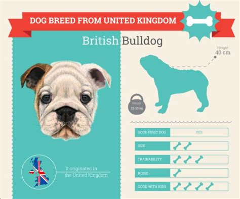 dog breed business template vector 09 vector animal