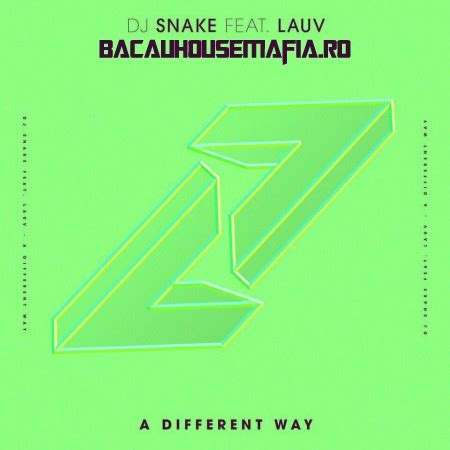 download mp3 dj snake feat lauv a different way dj snake lauv a different way adrenaline records