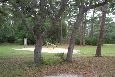 puppies plus melbourne fl wickham park in melbourne florida things to do in brevard county fl