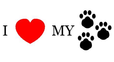 My Pet for animals of saskatchewan inc january 2012