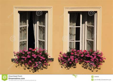 win with flower windows with flowers stock photo image 1580600