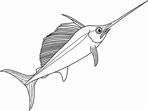 sailfish coloring pages swordfish coloring pages getcoloringpages com