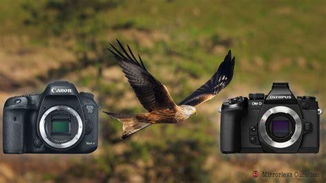 best lenses for olympus em1 best nikon lenses for wildlife photography auto design tech