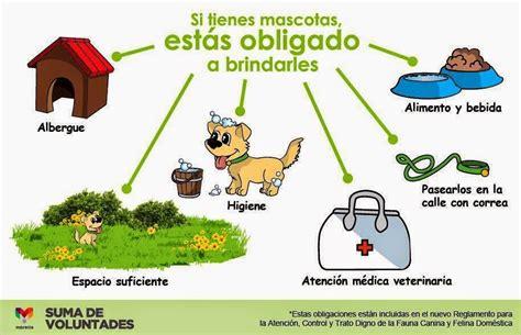 formas de cuidar a los animales wikihow apexwallpapers com formas de cuidar a los animales wikihow apexwallpapers com