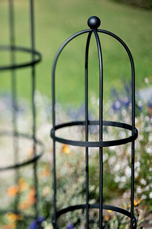 Small Metal Trellis Trellis Guide How To Choose The Best Supports For
