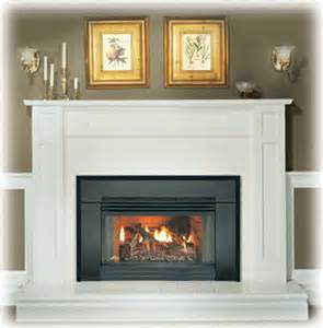 napoleon gi3600 gas fireplace insert gas or