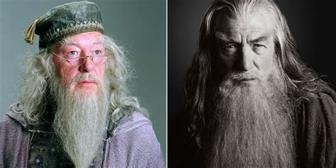 what house is dumbledore in westboro baptist church counter trolled by equality house with dumbledore gandalf