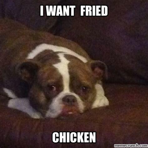 derpy dogs derpy memes memes