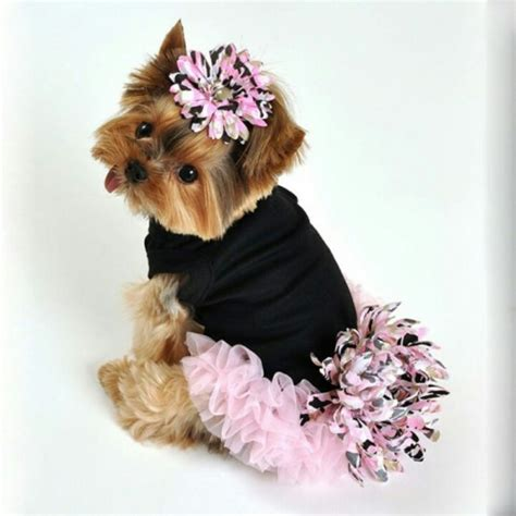 yorkie shirts teacup yorkie clothing dress the clothes for your pets