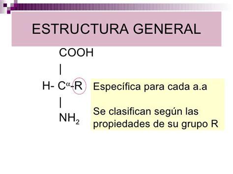 estructura y funcin del 8491130810 estructura y funci 243 n de amino 225 cidos p 233 ptidos y prote 237 nas