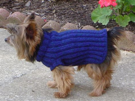 knitting pattern dog coat easy knitted dog sweater pattern images frompo