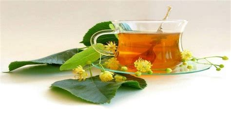 Detox Tea For Smokers by How To Detox Your Lungs After Naturally 8 Easy Ways