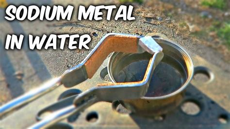 happen   put sodium metal  water