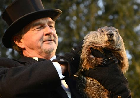groundhog day time groundhog day punxsutawney phil predicts an early