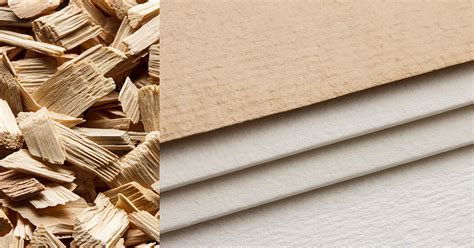 Paper From Wood Pulp - products europcell excellence in fibres and papers