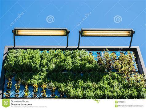 buy vertical garden 28 images vertical garden