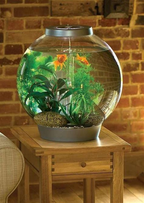 beautiful home fish tanks pinterest the world s catalog of ideas