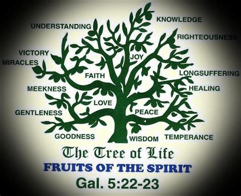 bible verse fruit of the tree ambassador for ministries inc 134 the tree of