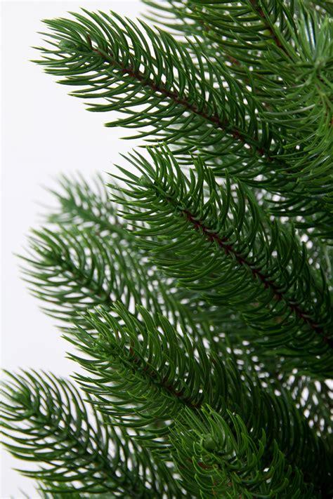 tannenbaum premium 210cm yw k 252 nstlicher weihnachtsbaum