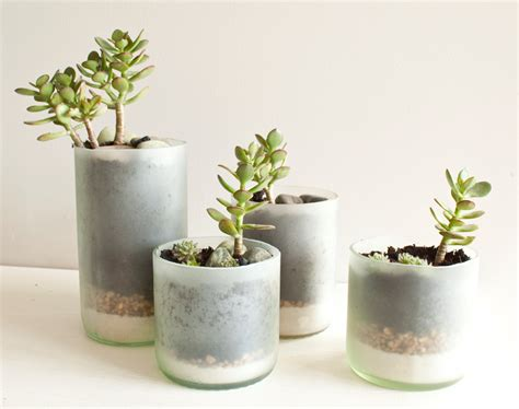 Glass Planters by Recycled Wine Bottle Succulent Planters Size Small