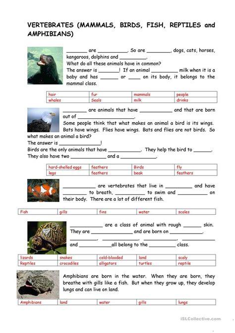 uncategorized vertebrates and invertebrates worksheets