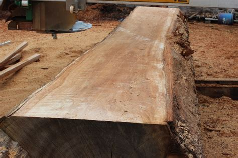 Timber Bar Slabs Hardwood Timber Slabs Australian Hardwood Timber