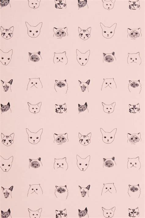 cat wallpaper pinterest wallpaper para celular