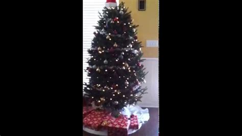 how to water a real christmas tree youtube