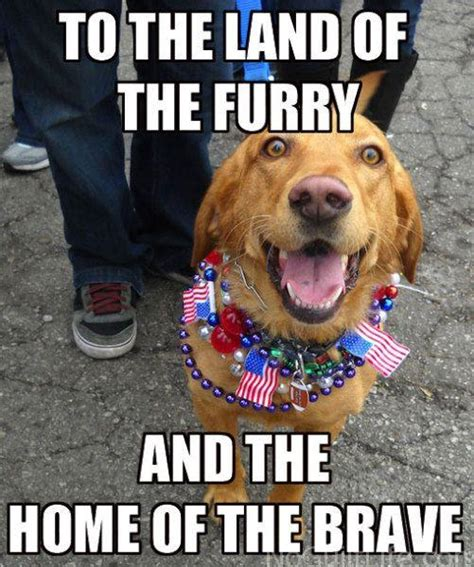 Funny 4th Of July Memes - funny 4th of july monday memes my no guilt life my no